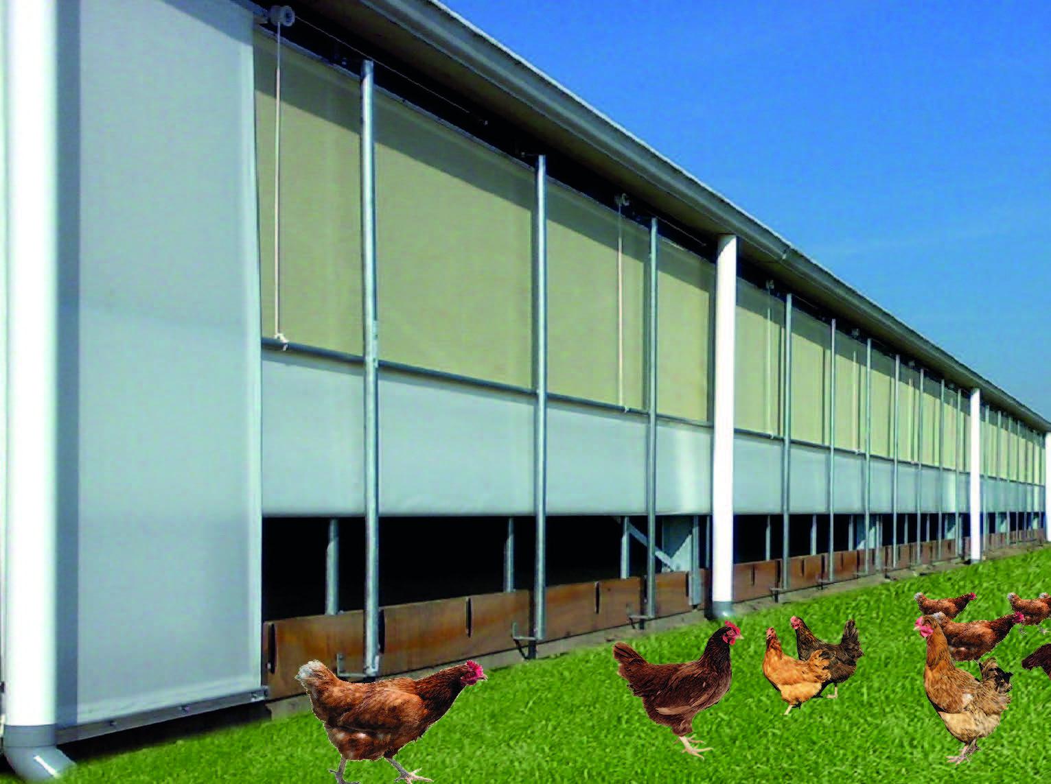 Vervaeke Systeme Port Poulet, Prodirect-Agriculture